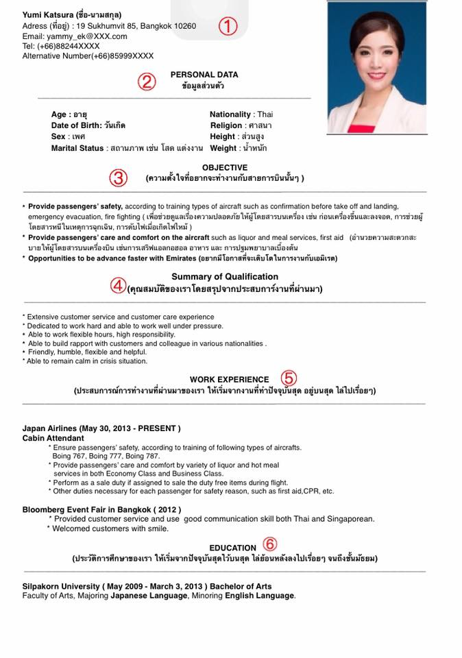 air hostess resume objective between delightedga